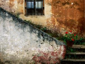 Adobe Stairs with Geraniums by Douglas Steakley