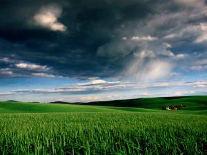 Red Barn in Field with Storm Clouds. by Douglas Steakley
