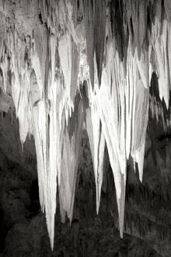 Carlsbad Cavern II BW by Douglas Taylor