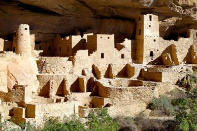 Cliff Palace at Mesa Verde by Douglas Taylor