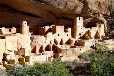 Cliff Palace Pueblo by Douglas Taylor