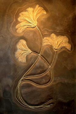 Crinoids I by Douglas Taylor