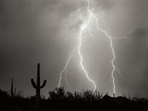 Electric Desert I BW by Douglas Taylor