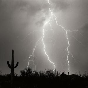 Electric Desert III BW by Douglas Taylor