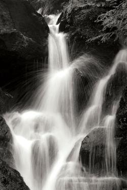 Falling Water II BW by Douglas Taylor