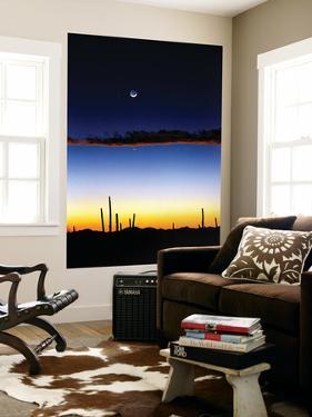 Moonrise by Douglas Taylor