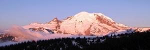 Morning at Mount Rainier by Douglas Taylor