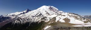 Mount Rainier View by Douglas Taylor