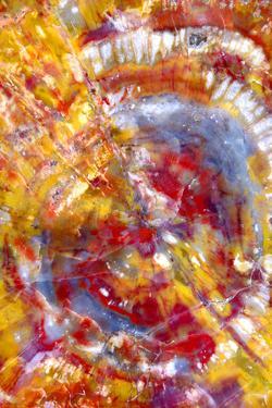 Spiral Galaxy by Douglas Taylor