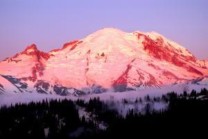 Sunrise at Mount Rainier by Douglas Taylor