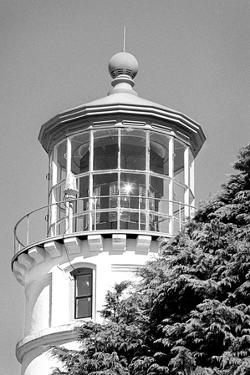 Umpqua River Lighthouse BW by Douglas Taylor