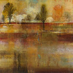 Tree Shadows II by Douglas