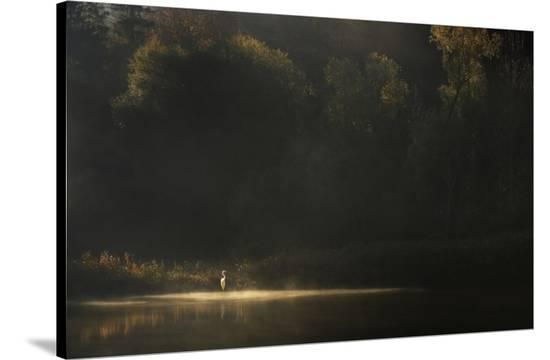 Down By The River-Norbert Maier-Stretched Canvas Print