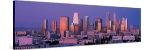 Downtown Los Angeles Skyline II
