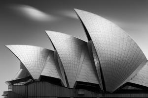 Classical Opera House Profile by Dr. Akira Takaue