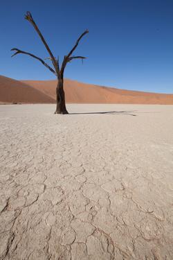 Namibia Desert by DR_Flash