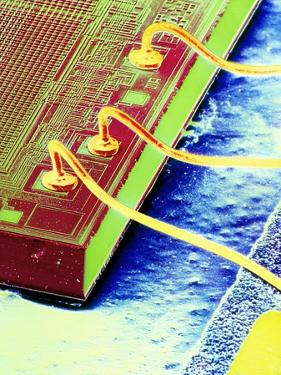 False-colour SEM of An Integrated Circuit. by Dr. Jeremy Burgess