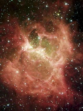DR6 Nebula