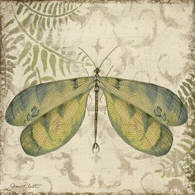 https://imgc.allpostersimages.com/img/posters/dragonfly-daydreams-b_u-L-Q1CAA5J0.jpg?artPerspective=n
