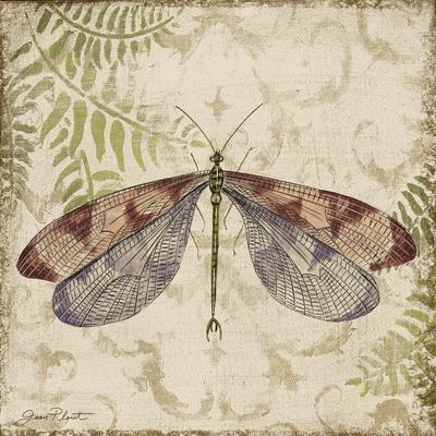 https://imgc.allpostersimages.com/img/posters/dragonfly-daydreams-d_u-L-Q1CA9LL0.jpg?artPerspective=n