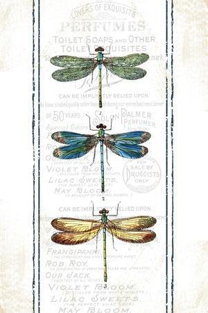 https://imgc.allpostersimages.com/img/posters/dragonfly_u-L-Q10ZRRW0.jpg?artPerspective=n