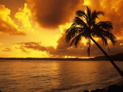 https://imgc.allpostersimages.com/img/posters/dramatic-tropical-sunrise-on-the-garden-isle-kauai-hawaii-usa_u-L-PN6WRV0.jpg?p=0
