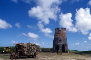 Drax Hall Sugar Mill, Barbados