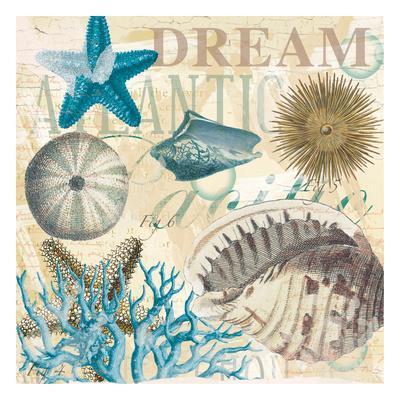 https://imgc.allpostersimages.com/img/posters/dream-shells-r1_u-L-F93SD50.jpg?p=0