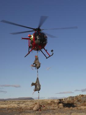A Spotter Watches as the Pilot Sets Down the First Load of Sheep by Drew Rush