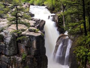Shell Falls in the Bighorn National Forest, Wyoming by Drew Rush
