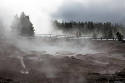 Tourists Visit Fountain Paint Pots in Yellowstone National Park by Drew Rush