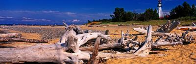 Driftwood on beach, Whitefish Point Lighthouse, Michigan, USA