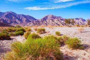 California Desert Lands by duallogic