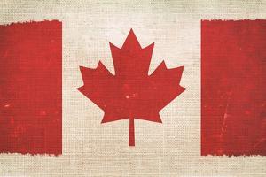 Canada Flag On Canvas by duallogic