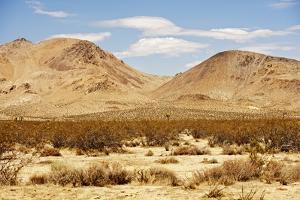 Mojave Desert Landscape by duallogic