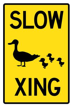 Duck Crossing Sign Poster
