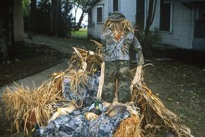 Duck Decoys, Scarecrow, Wings over the Prairie Festival, Stuttgart, Arkansas