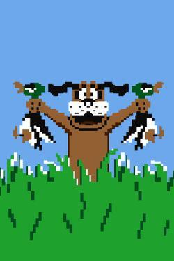 Duck Hunting Dog Video Game