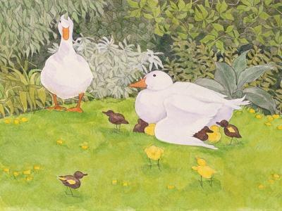 https://imgc.allpostersimages.com/img/posters/ducks-and-ducklings_u-L-PUQFXE0.jpg?artPerspective=n