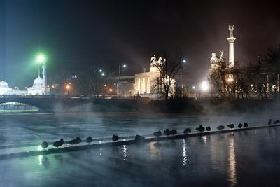 https://imgc.allpostersimages.com/img/posters/ducks-silhouetted-at-night-on-heroes-square-budapest-july-2009_u-L-Q13A87E0.jpg?p=0