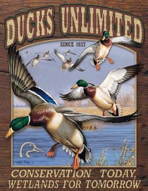 Ducks Unlimited Conservation Wetlands