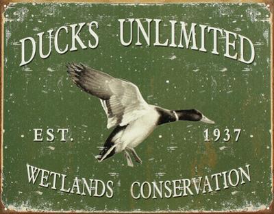 Ducks Unlimited Wetlands Conservation