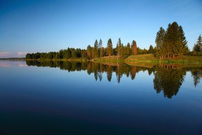 Calm Pond with Pine Trees on the Coast by Dudarev Mikhail