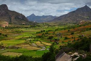 Green Valley with Rice Fields. Madagascar by Dudarev Mikhail