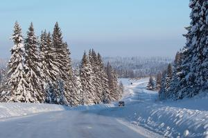 Winter Road with Snowy Pine Trees at Sunny Day by Dudarev Mikhail