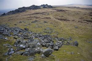Preseli Hills (Mynyddoedd Y Preseli) by Duncan Maxwell