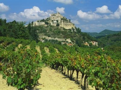 Vineyard, Entrechaux, Vaucluse, France