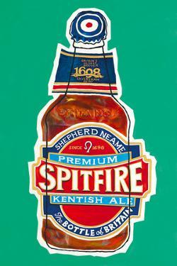 Spitfire by Duncan Wilson