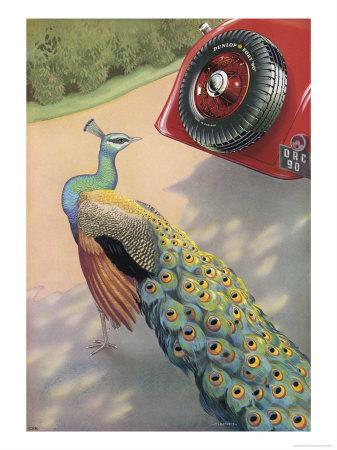 https://imgc.allpostersimages.com/img/posters/dunlop-tyre-advertisement-featuring-a-peacock_u-L-OVKP50.jpg?p=0