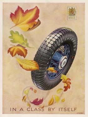 Dunlop Tyres - in a Class by Itself